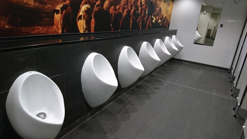 ブリスベン空港 国際線ターミナル トイレ